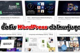 ซื้อธีม Wordpress